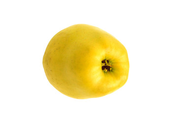 Yellow organic juicy ripe apple on a white background. Fresh pure fruit.