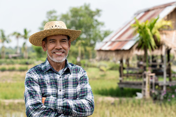 Portrait happy mature man is smiling. Senior farmer with white beard feeling confident. Elderly asian man standing ,cressed his arm and in a shirt and looking at camera.