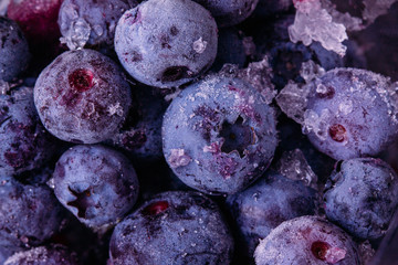 Blueberry berries background in frost