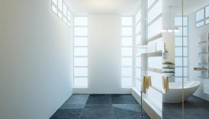 Contemporary Bathroom Adaptation (design)