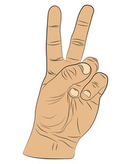 hand with peace vector drawing illustration