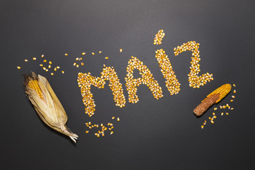 Concept of the word corn in spanish language formed with dry corn seeds on black background and decorated with golden corn cobs and dry corn seeds