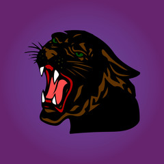 Aggressive Black Panther with open mouth, cartoon on a purple background,