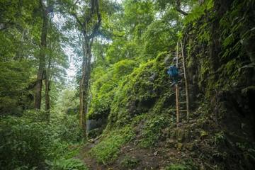 Young hiker on a bamboo ladder in the jungle, Kalianyar, Sempol, Jawa Timur, Indonesia, Asia