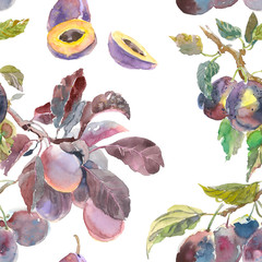 Seamless pattern of watercolor fruit plum branch isolated on white background. Hand drawn painting. for your design, cloth, package