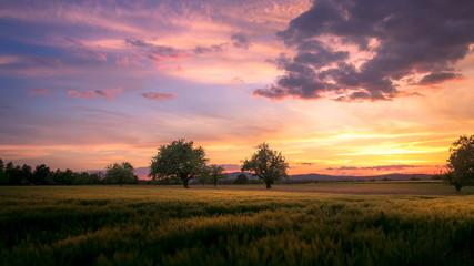 Swiss countryside landscape sunset