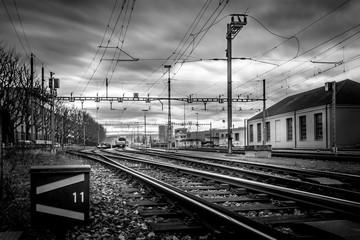 Rails in Train Yard - Black and White