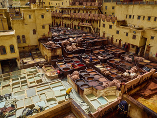 Traditional Moroccan plant, tannery for the processing animal skin, oval and rectangular stone baths with liquids of white and red colors, Fez, Morocco.