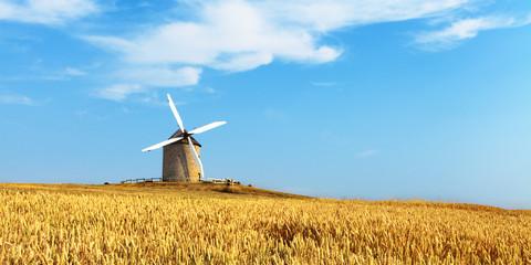 Photo sur Aluminium Bleu Moulin et champ de blé.