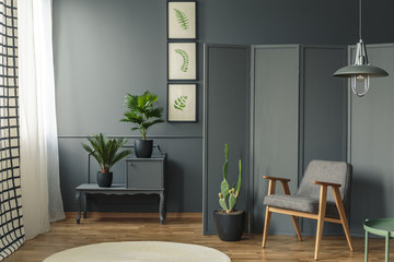 Grey room with plants interior