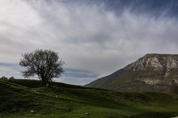 Monti del Parco Nazionale d?Abruzzo