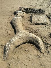 Schwanzflosse einer aus Sand geformten Meerjungfrau mit Muscheln verziert am Strand in Binz auf Rügen an der Ostsee in Mecklenburg-Vorpommern