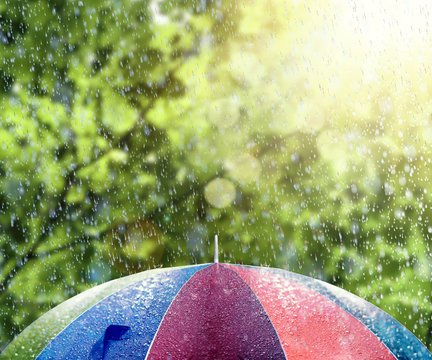 Summer rain with sunshine on colorful umbrella 3D Rendering
