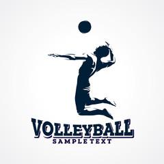 Volleyball Sport Silhouette Logo Designs Template