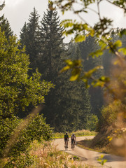 Bikers riding bike on road in Black Forest