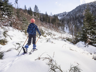 Rear view of a Girl ski walking in snowy Black Forest, Germany, Europe