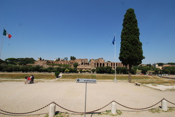 Circus Maximus; sky; atmosphere of earth; daytime; tree
