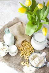 Fresh organic soy products:soy milk, soy yogurt, soy chese tofu, flavour and soy beans