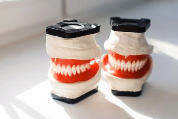 Dental model and dental equipment on white background, concept medical image of dental healtcare, dental hygiene isolated at white back