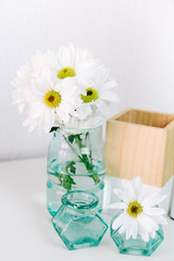 Summer flower in a vase on a light background