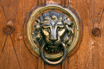 Ancient door with a picture of a lion