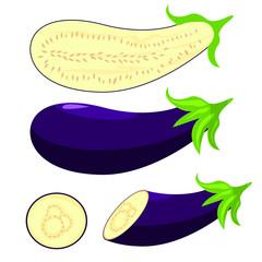 Eggplant vector design