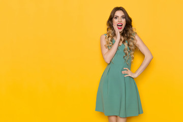 Surprised Beautiful Young Woman In Green Dress Is Holding Hand On Chin And Shouting