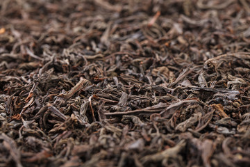 Dried tea leaves. Large leaf black tea.