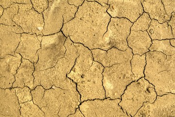 Land damaged by drought