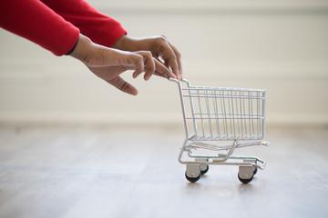 Hands Pushing A Mini Cart