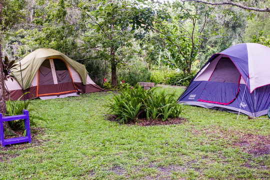 Backyard Camping - Multiple Tents