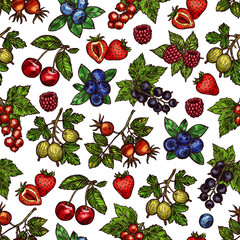 Vector set of colorful berries