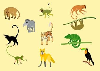 Tropical animals vector set, animals icons, jaguar, wolf, chameleon, tapir, ape.