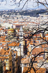 NICE, FRANCE, on March 9, 2018. A picturesque branch of a tree against the background of the old city. View from a survey site of Hill Shato