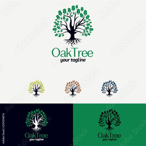 Oak Tree Logo Designs Template