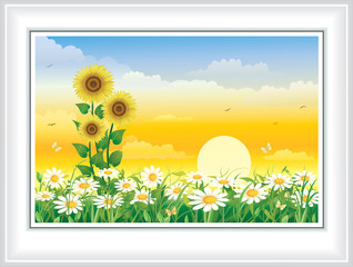 Summer landscape with daisies and sunflowers against the background of the rising sun