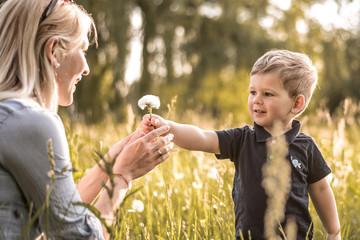 Sohn schenkt seiner Mutter eine Blume