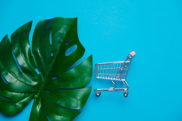 Colored shopping cart and palm leaf. Objects isolated on blue background