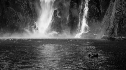 The Personalty of a Waterfall - Stirling Falls, Milford Sound, Fiordland National Park, New Zealand