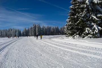Traumhafte Winterlandschaft und Loipen im Erzgebirge. Langlauf im Schnee.