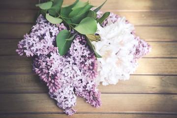 lila Flieder als weicher Blumenhintergrund