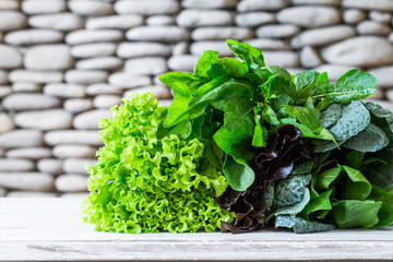 Leaves of green and red lettuce, kale, spinach, amaranth on white table