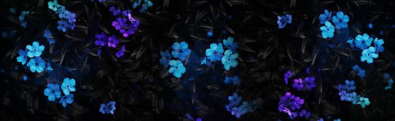 Fotomurales - Dark background with flowers