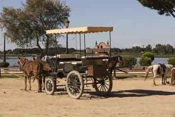 Carro de caballos en la Aldea del Rocío, Huelva.