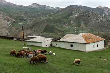 Cek village in the highlands, Azerbaijan