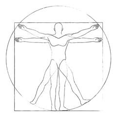 Vitruvian man drawing vector
