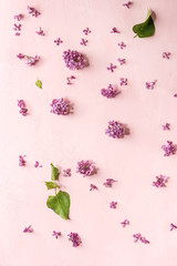 Spring purple lilac flowers over pink pastel background. Holiday or wedding greeting card. Copy space. Floral background. Toned image