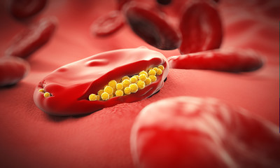 Malaria Virus Cell - 3D illustration