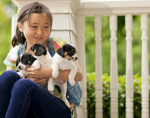 Smiling young girl holding three puppies in her lap.