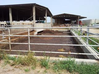 Stalla di bovini, vasca per il trattamento dei liquami Fototapete